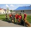 Услуги животным Донецк и область
