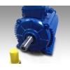 Электродвигатель асинхронный Idukta